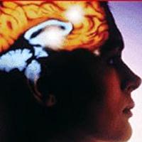 Família com histórico de alcoolismo afeta cérebro de adolescente