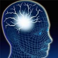 Álcool mata ao desacelerar o sistema nervoso