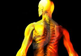Alcoolismo altera propriedades mecânicas dos ossos