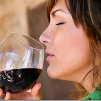 Mulheres com maior instrução bebem mais